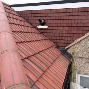 tile-roofing1